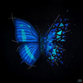 Beretta Sabrina - Effet papillon