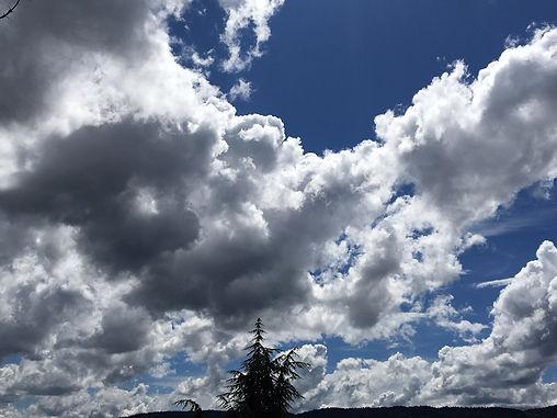 H4H Sky with Ceder 2020 06.jpg