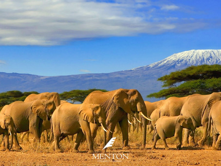 Tanzânia surpreendente