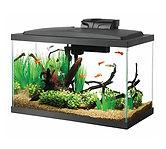 Aqueon Standard Glass Aquarium Tank 10-Gallon $10 << $19.99