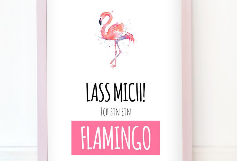Kunstdruck, Print - Flamingo
