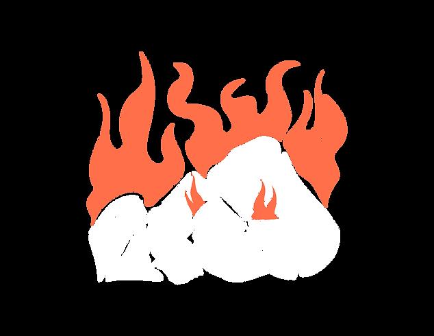 Fuego Zarza