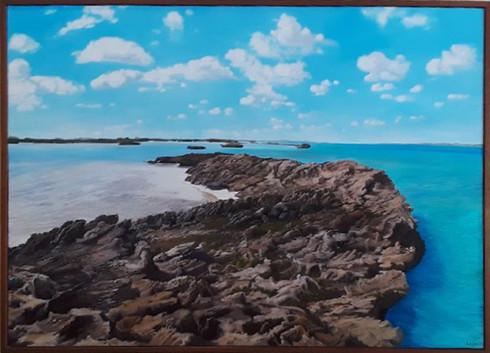 Seaside Purslane by Cristina de la Vega