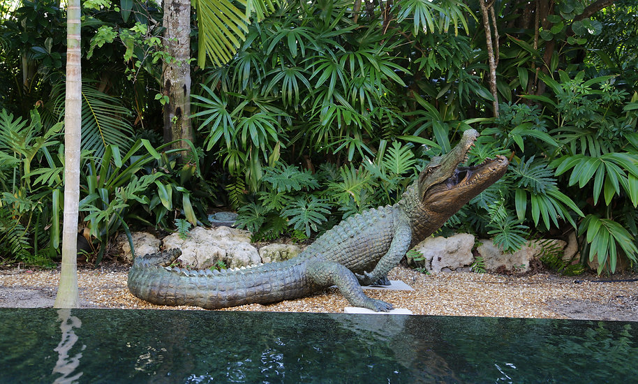 A large bronze sculpture of an alligator with its head in the air and mouth open sitting by water.