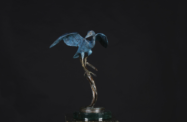 Little Blue Heron Balancing