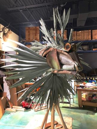 Lionfish in Studio