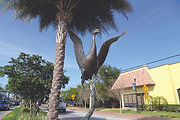 The Dancing Sandhill Crane is a Life Size Sandhill Crane bronze sculpture created by Artist Geoffrey C. Smith. It is located on Colorado Avenue in Stuart, Florida.
