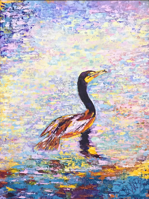 Everglades Single Cormorant