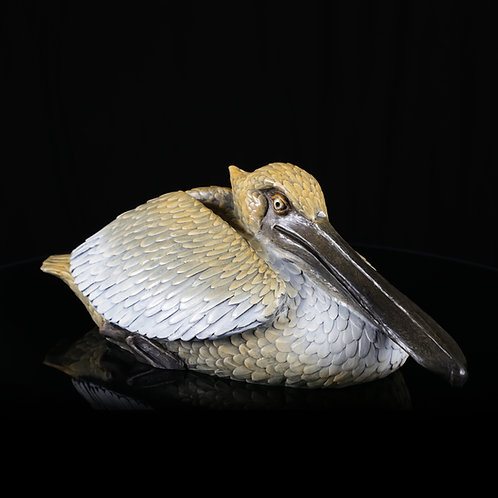 Tranquility, Resting Pelican