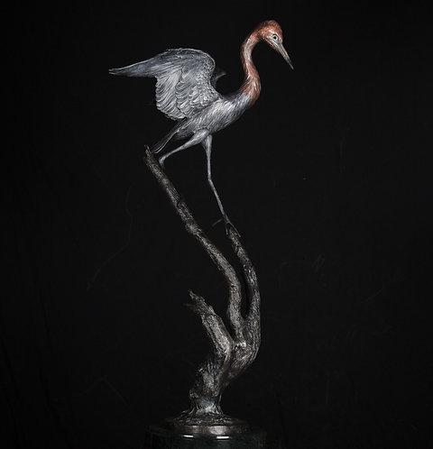 Life Size Reddish Egret