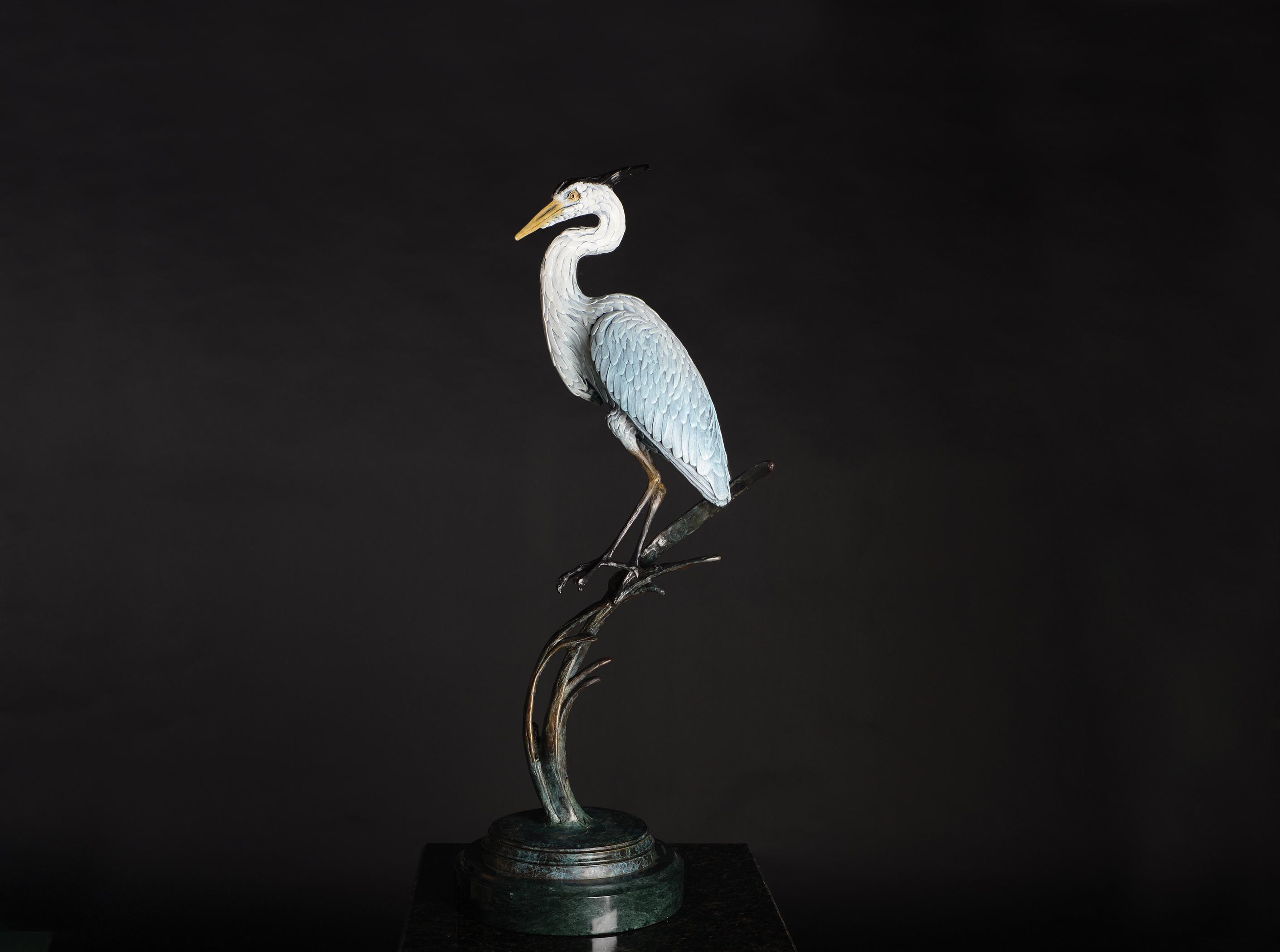 Great Blue Heron Balancing