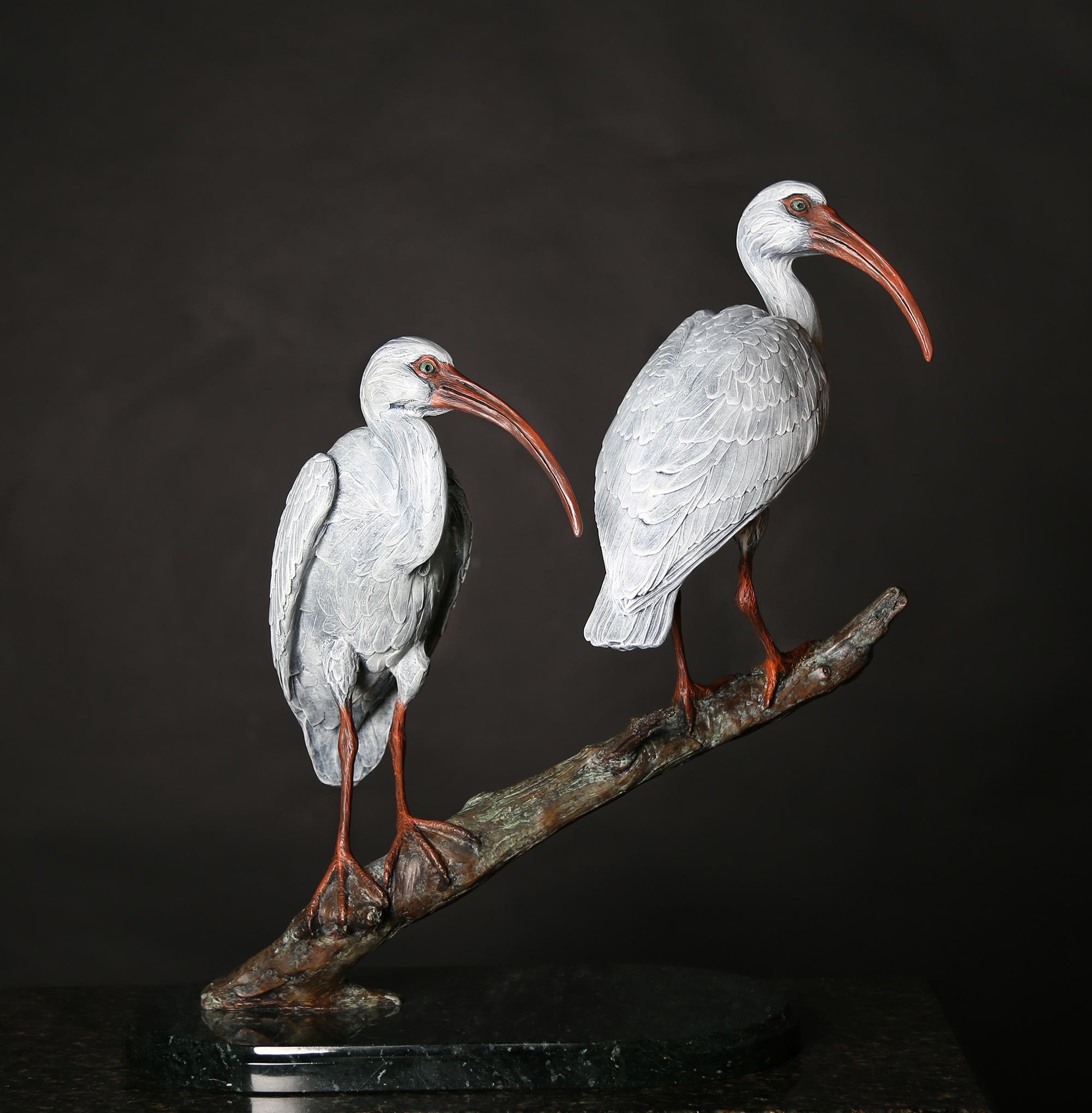 Ibis Duet