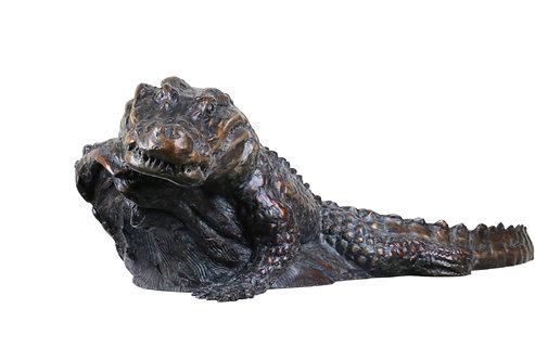 Park Ranger, Alligator