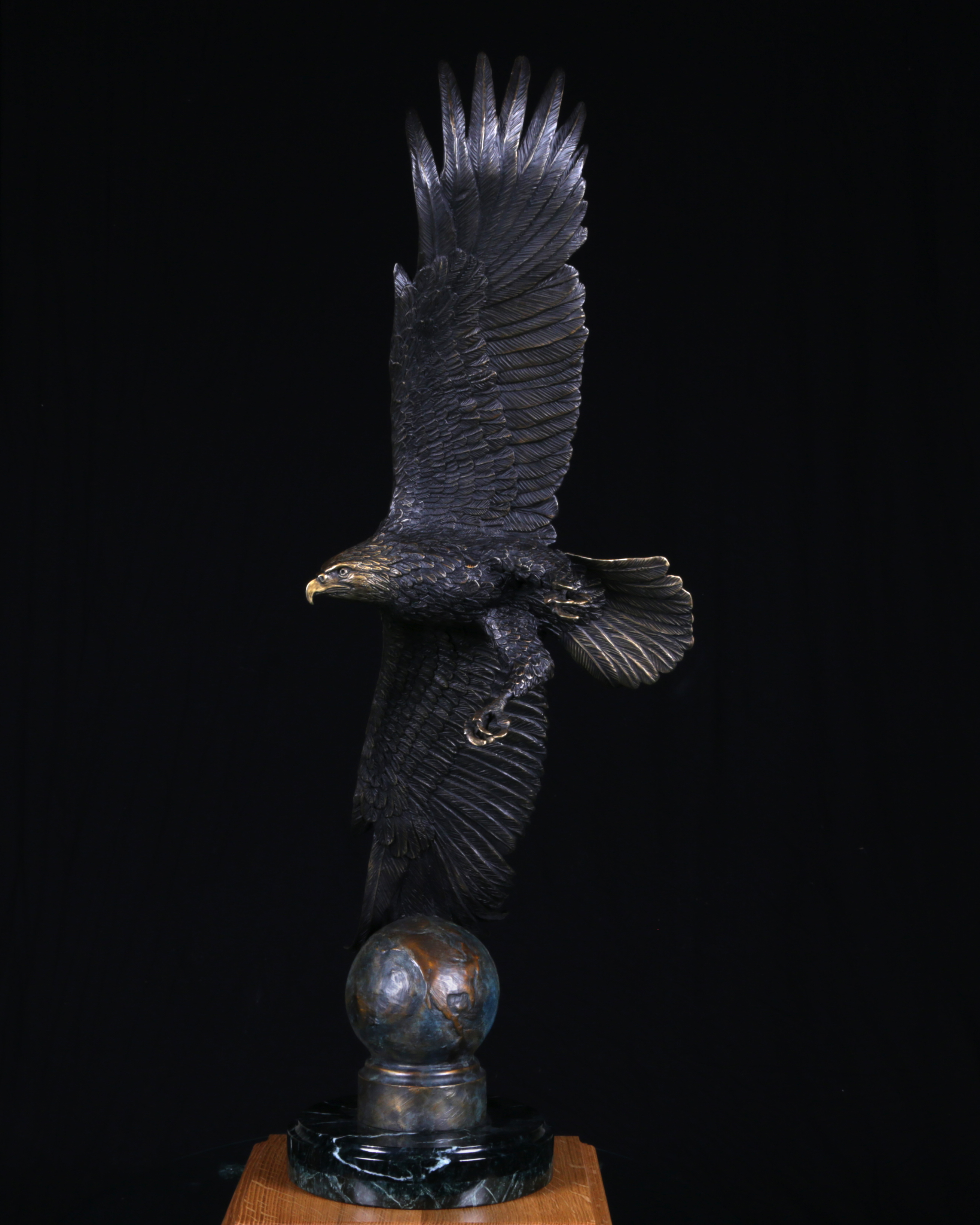 Soaring Freedom, America Bald Eagle
