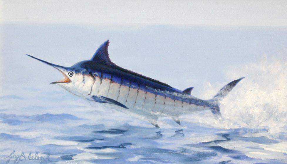 Blue Marlin by Guy Coheleach