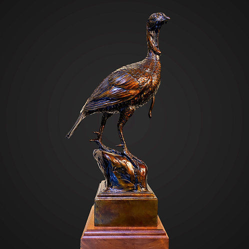 Sentinel Turkey