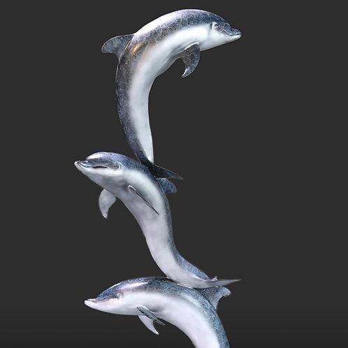 Bottlenose Dolphin Trio