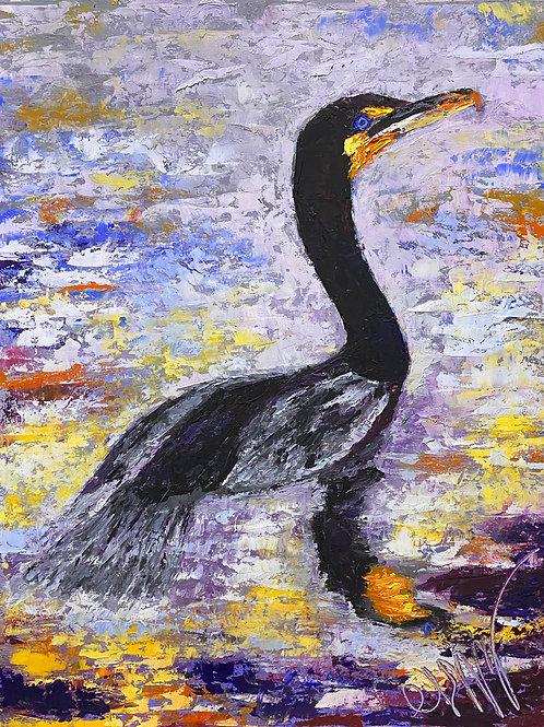Everglades Cormorant at Sunset