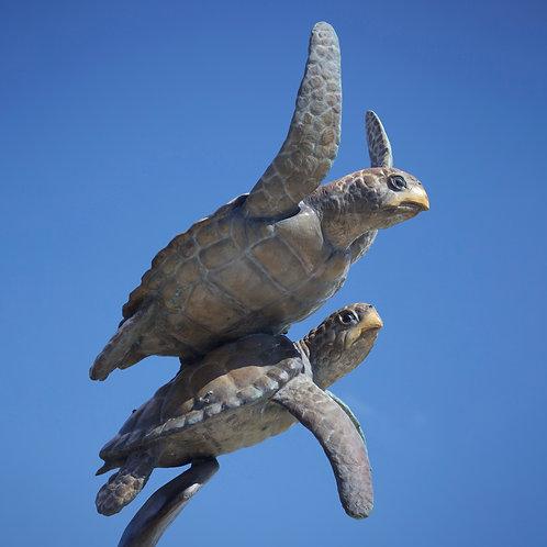 Turtle Duet