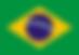 flag brasil.png