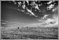 Daniel Hambourger - Photographe : Chaleur de juillet