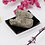 Thumbnail: Rock & Mineral Collection Geology Gem Kit in Clear Case