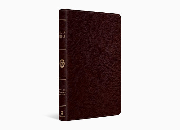 ESV Thinline Bible - Bonded Leather - Burgundy