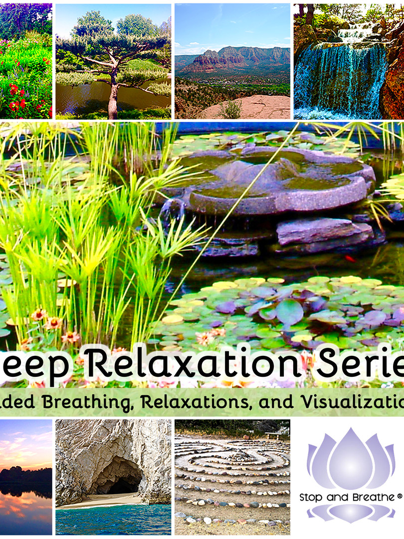 In 2017, Susan released the Deep Relaxation Series—Guided Breathing, Relaxations, and Visualizations available for audio download. This CD features seven amazing tracks highlighting different types of relaxation and visualization techniques, in addition healthy breathing instruction, all set to ambient music.