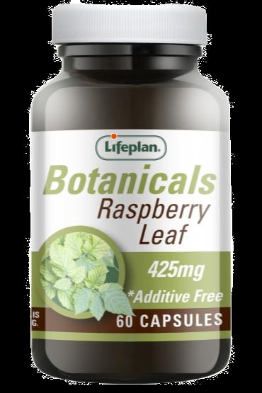 Lifeplan Raspberry Leaf X 60