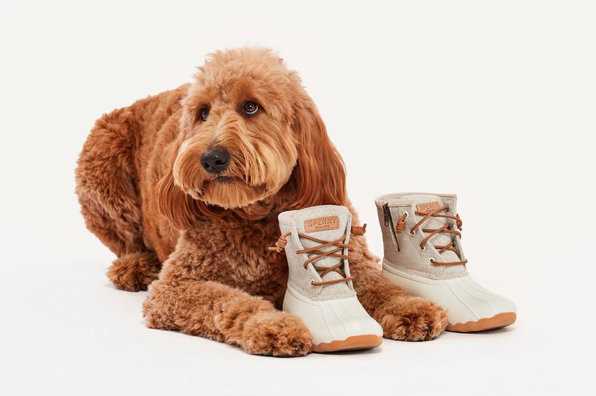 Shoes.com_On Model-o_73.jpg