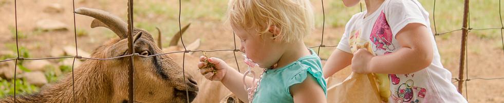 Campsite friends. Outdoor life. Experience farm life. Free range kids.