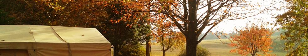 Mountain Splendour Autumn
