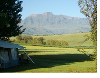 If you would like this to be your next camping spot... book it! Site 55.