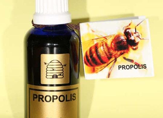 Propolis Tincture 50ml