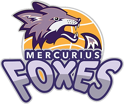 logo foxes transparant.png