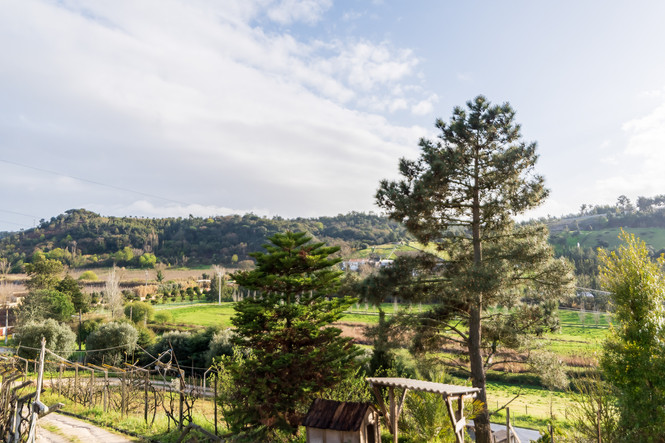 Vista da casa de campo