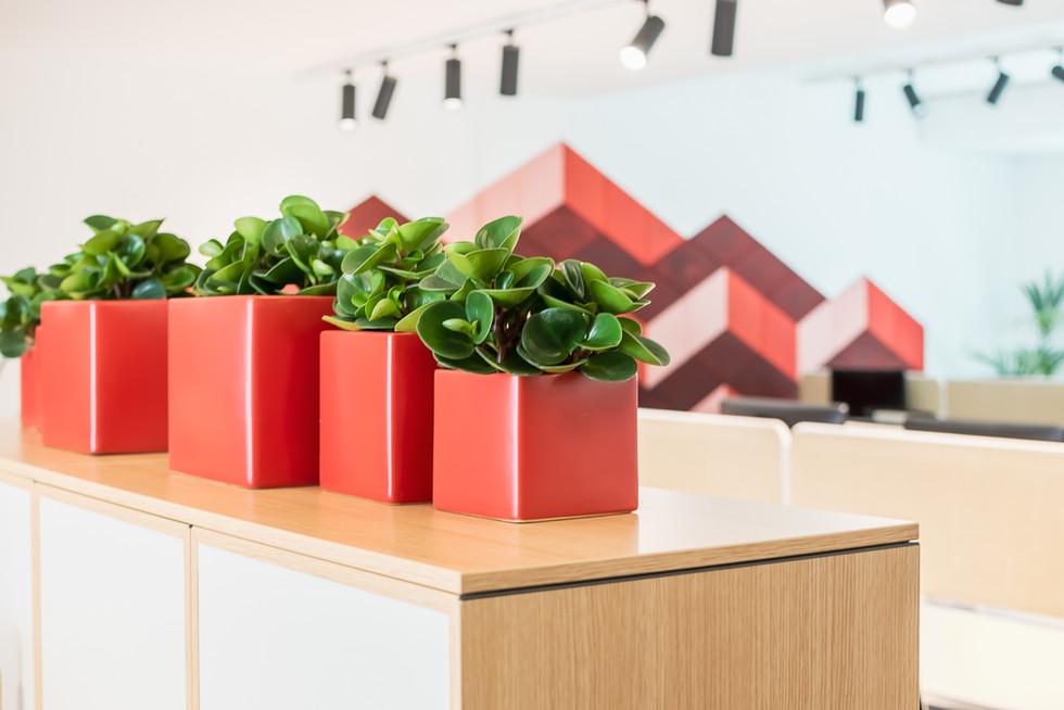 plantas de decoração de armários modulares