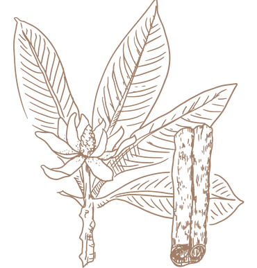 Herbs-03.png
