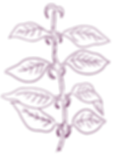 Sketch_Files_3-07.png