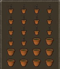 growing magic saplings in old school runescape