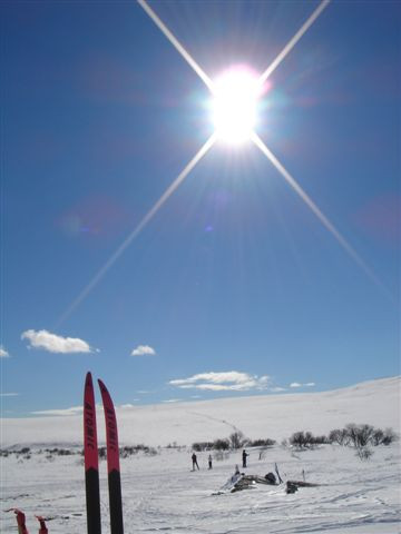 sol, ski og turglede