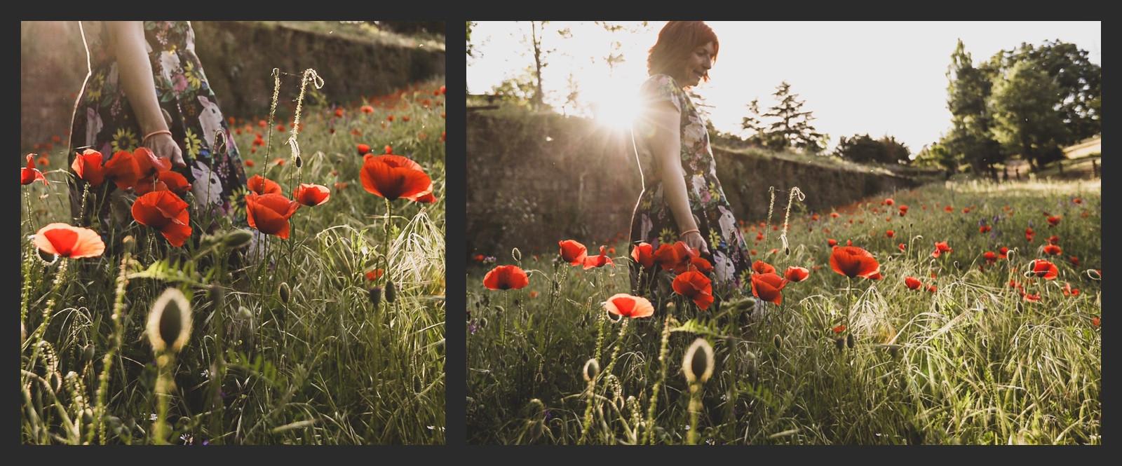 Poppy time