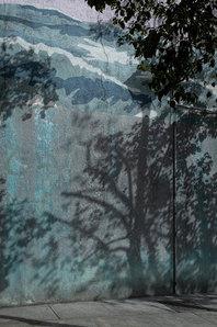 BegoAmare_The Living Forest (22).jpg