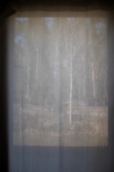 O Solitude-7.jpg