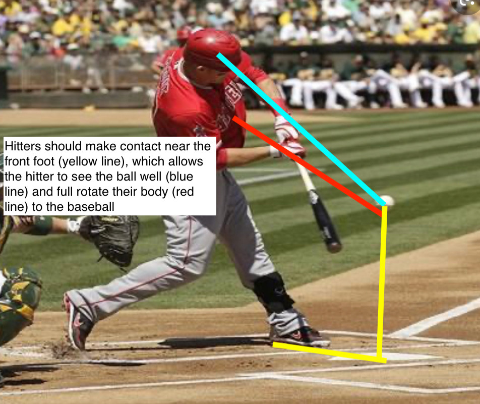 Trout Contact Point.JPEG