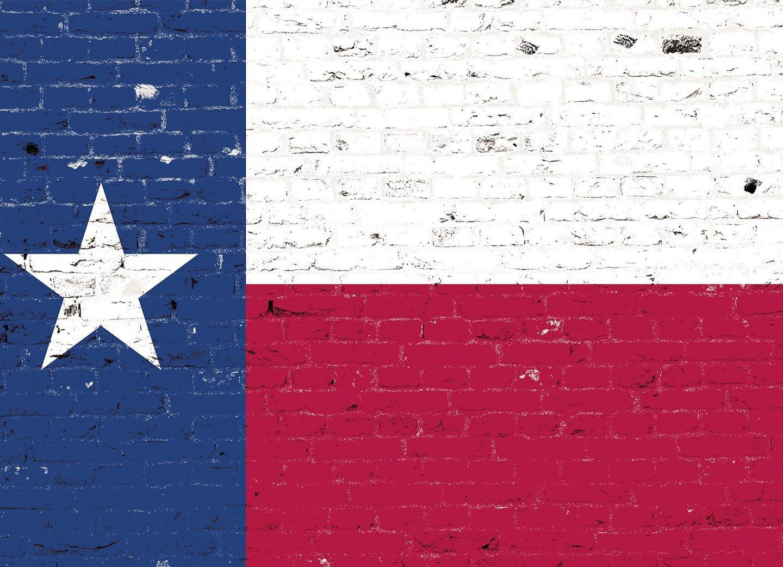 zapwalls-decals-texas-flag-graffiti-1173