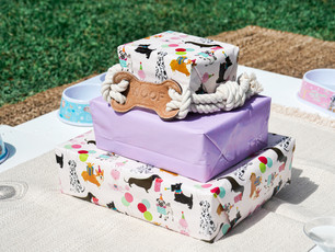 Dog Birthday Party Boxes