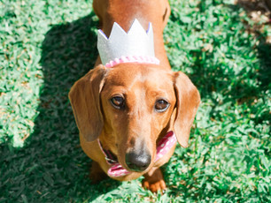 Little Ruby in her party hat