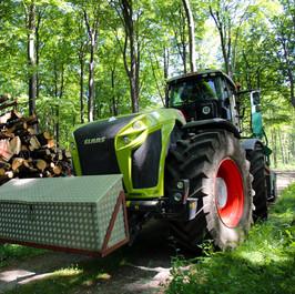 Træflisning i skov.JPG