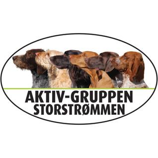 Logo til Aktiv-gruppen